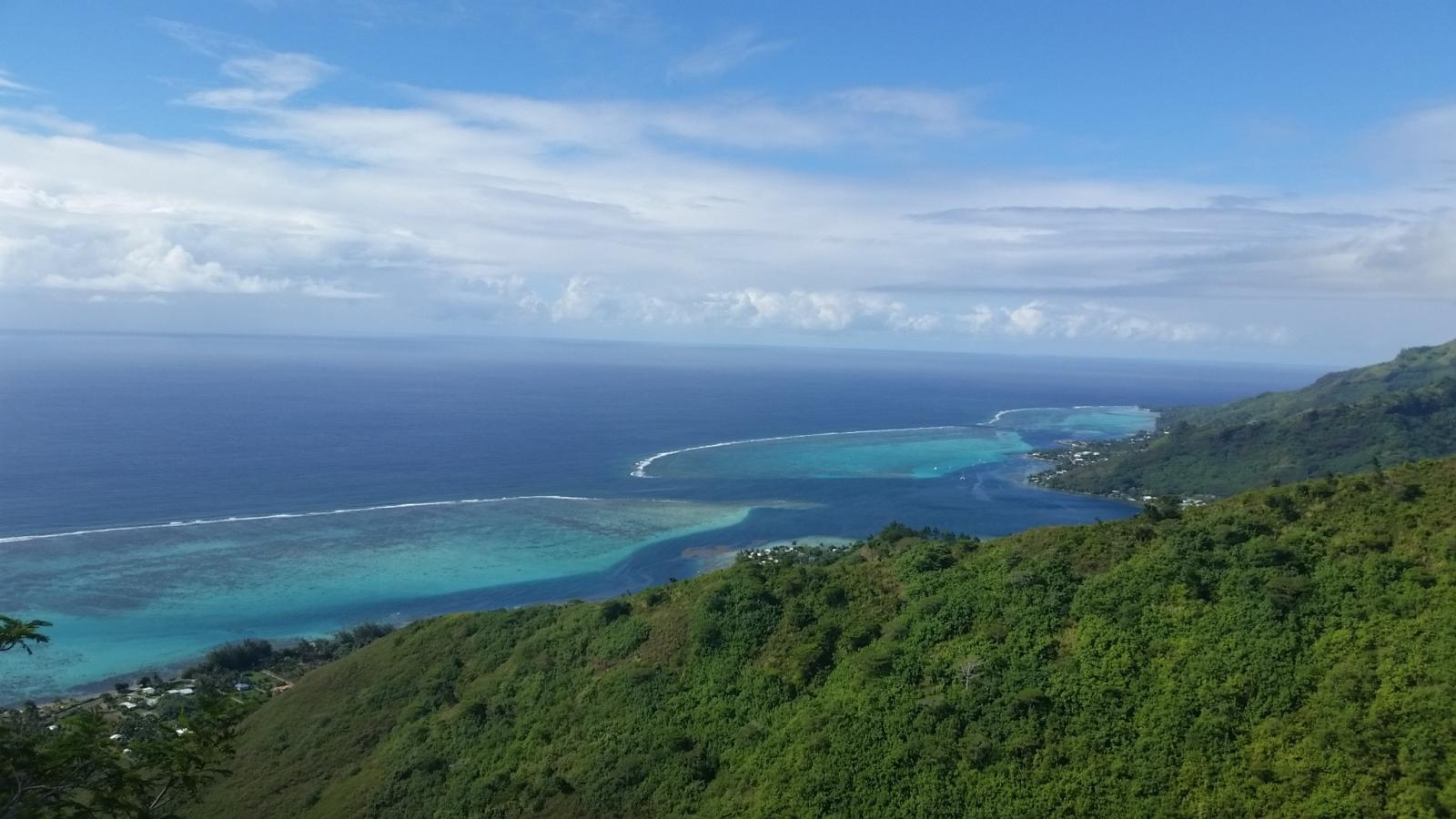 reef around Moorea